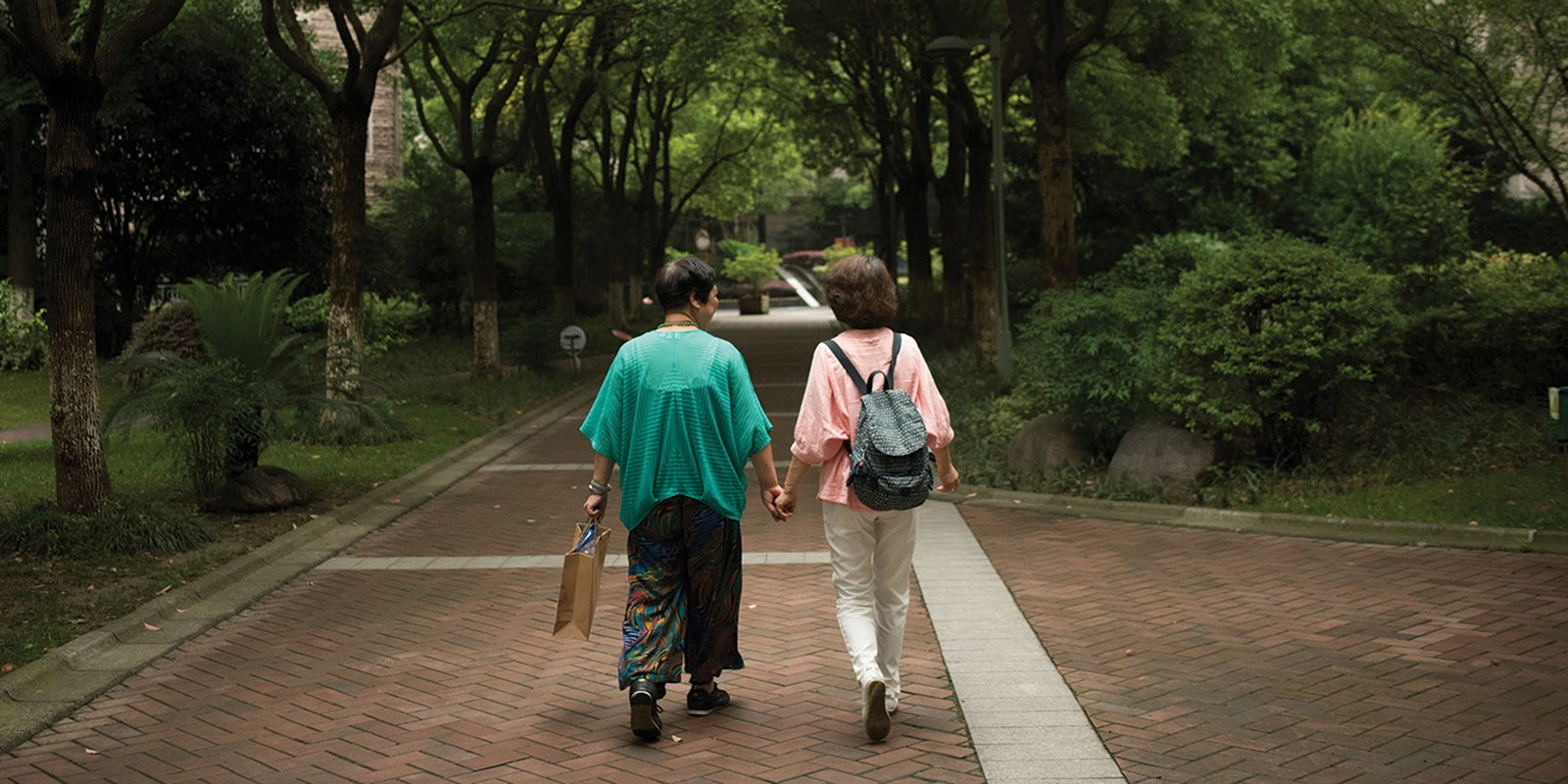 Women walking in the park holding hands